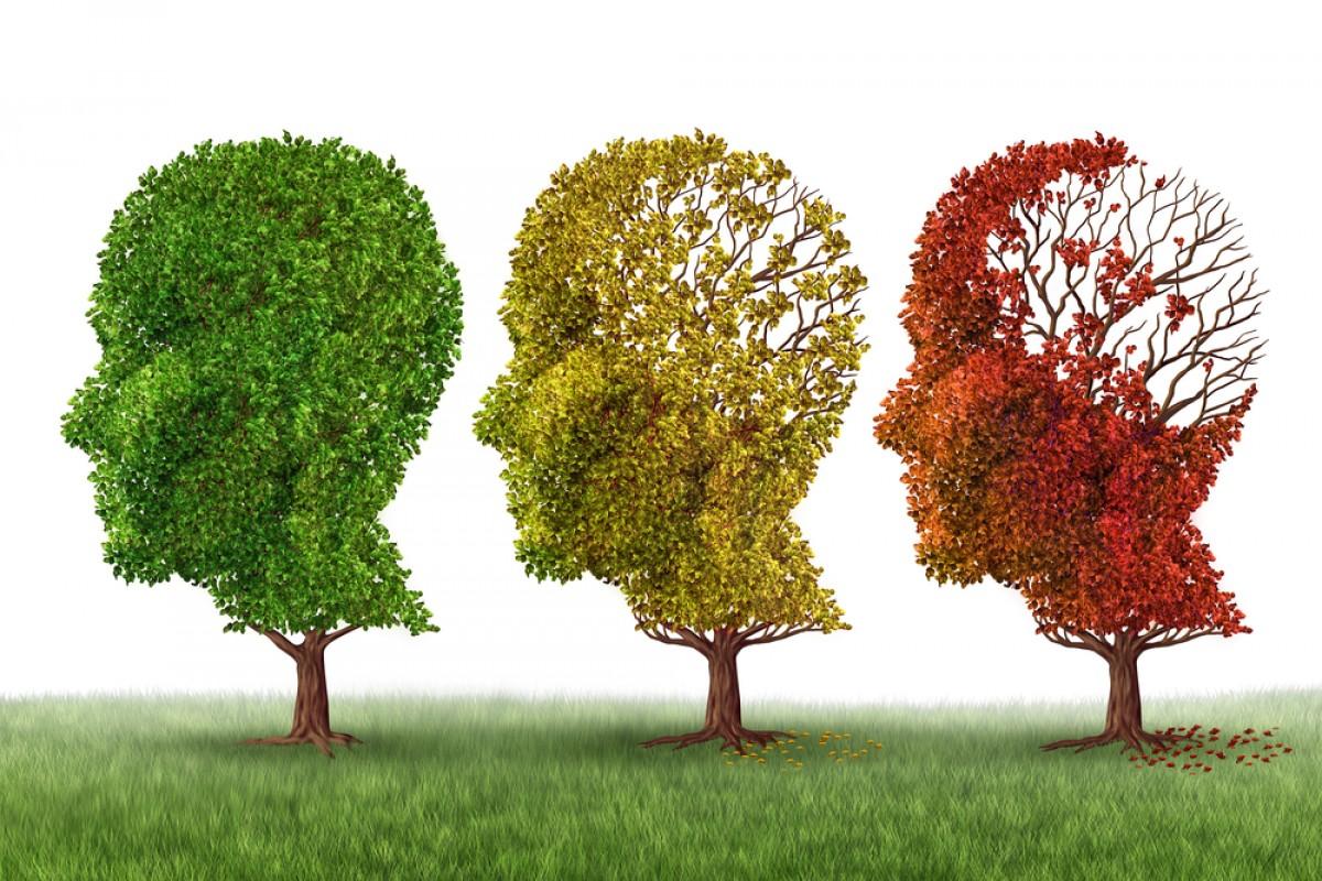 Life Insurance Seniors Alzheimer's Disease