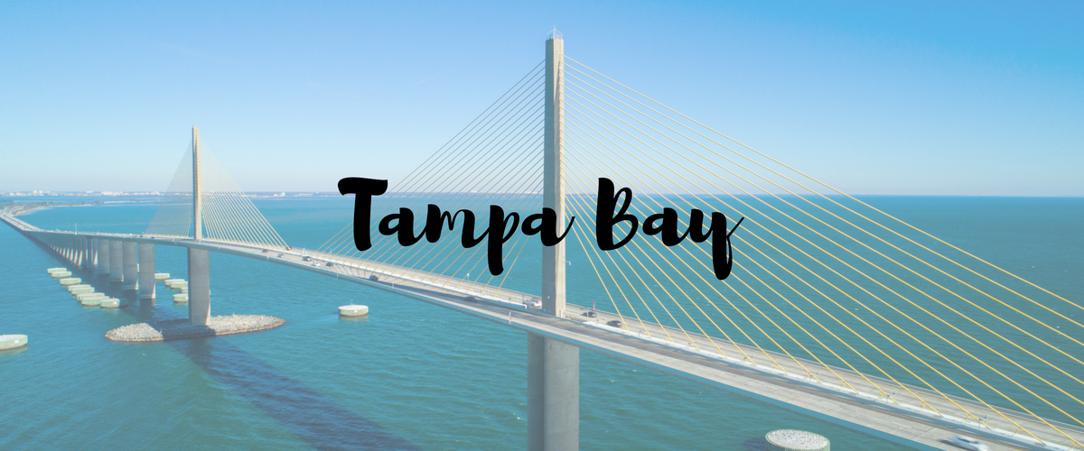 2019 Best Tampa Medicare Special Enrollment throughout the year